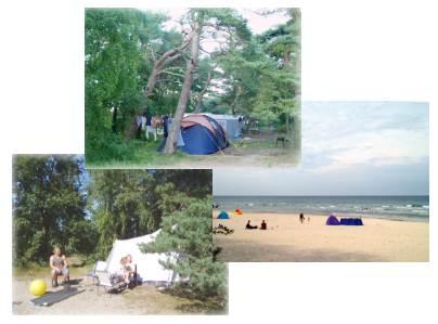M 246 Venort Camping